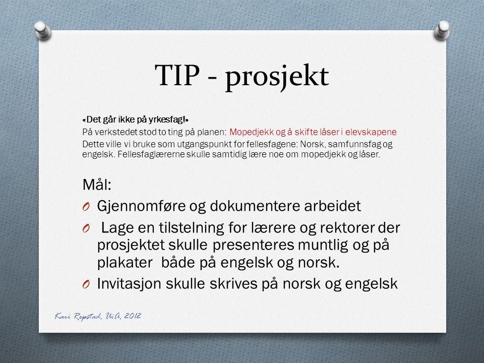 TIP - prosjekt «Det går ikke på yrkesfag!» På verkstedet stod to ting på planen: Mopedjekk og å skifte låser i elevskapene Dette ville vi bruke som utgangspunkt for fellesfagene: Norsk, samfunnsfag og engelsk.