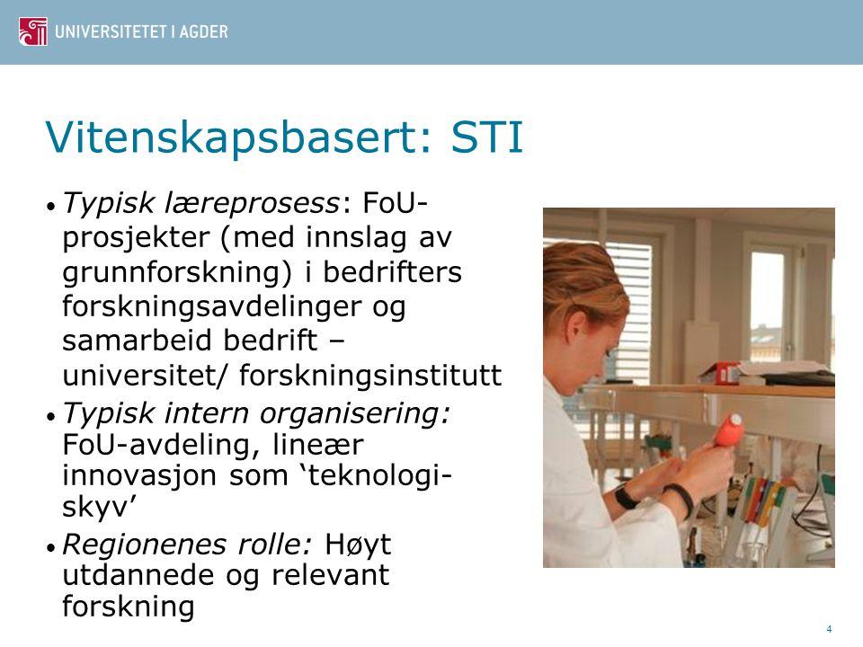Vitenskapsbasert: STI Typisk læreprosess: FoU- prosjekter (med innslag av grunnforskning) i bedrifters forskningsavdelinger og samarbeid bedrift – universitet/ forskningsinstitutt Typisk intern organisering: FoU-avdeling, lineær innovasjon som 'teknologi- skyv' Regionenes rolle: Høyt utdannede og relevant forskning 4