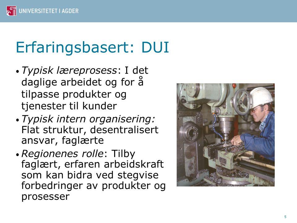 Erfaringsbasert: DUI Typisk læreprosess: I det daglige arbeidet og for å tilpasse produkter og tjenester til kunder Typisk intern organisering: Flat s