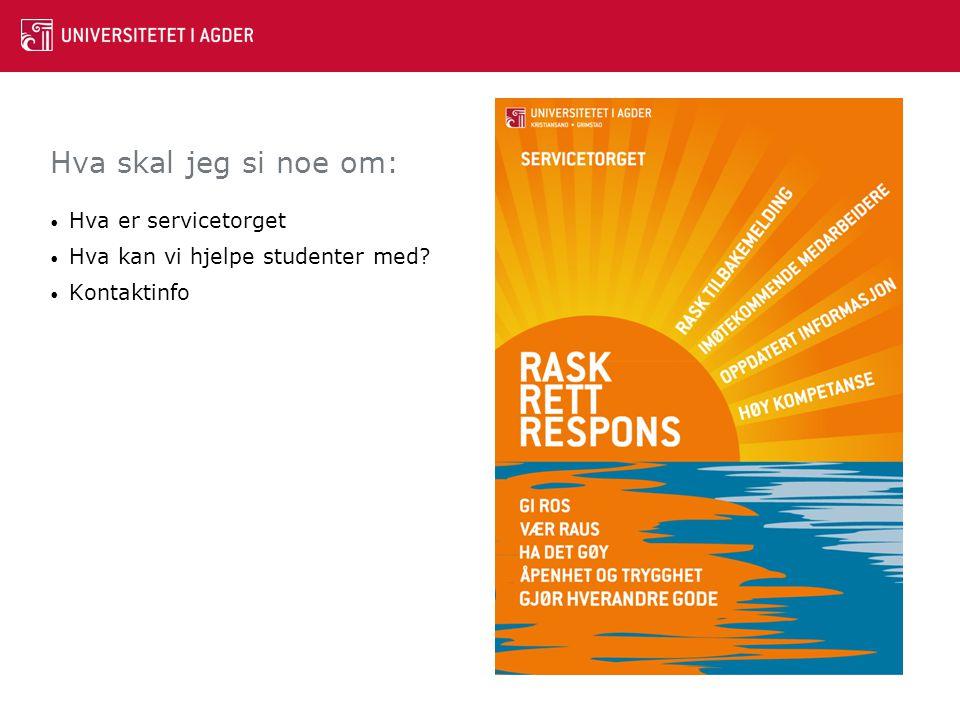 Hva skal jeg si noe om: Hva er servicetorget Hva kan vi hjelpe studenter med? Kontaktinfo