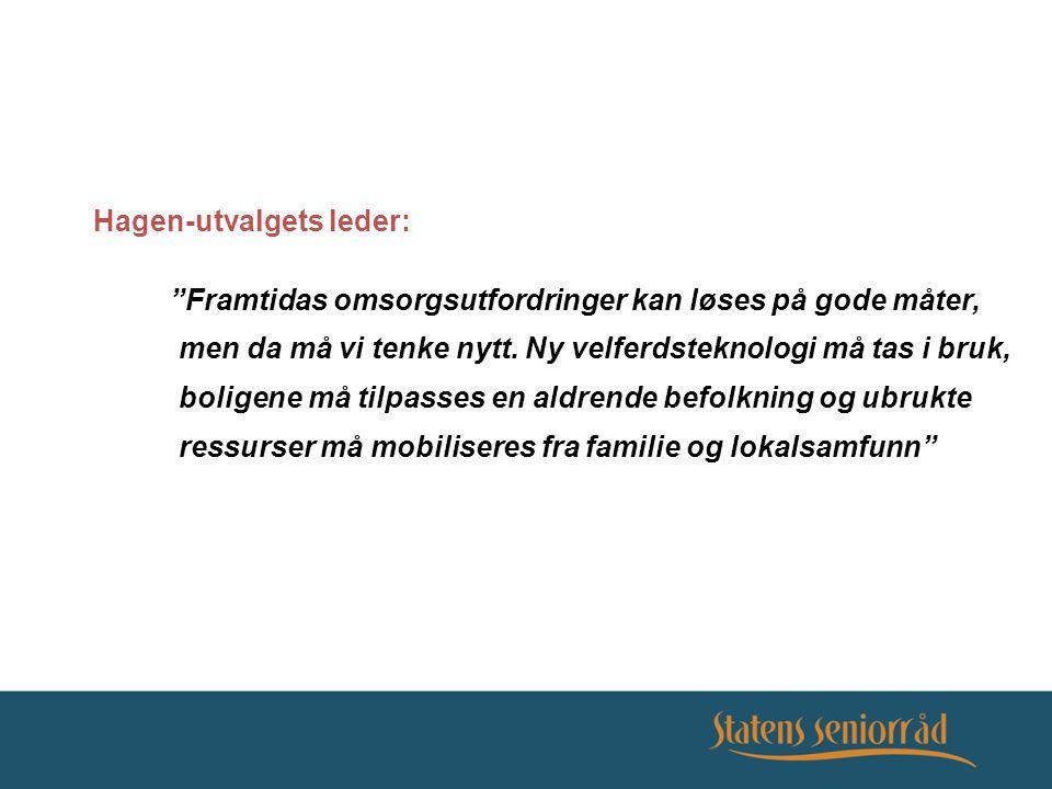 Hagen-utvalgets mandat: Se på bruk av teknologi i omsorgstjenestene overfor eldre og funksjonshemmede – spesielt: - ny teknologi - arkitektur og nye boformer - brukerinnflytelse og egenmestring - forskning og utvikling