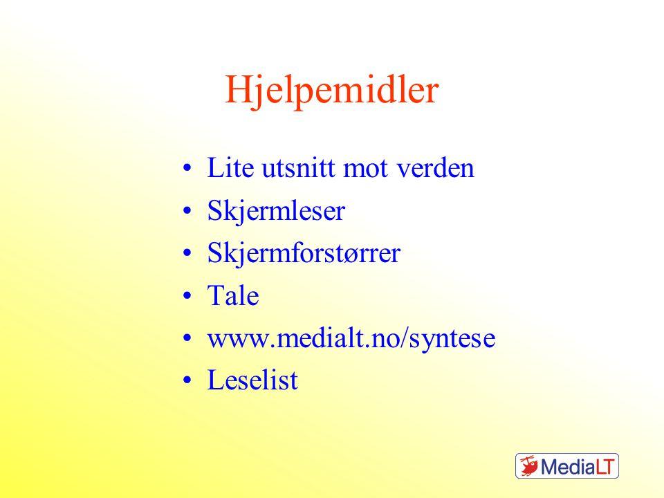 Hjelpemidler Lite utsnitt mot verden Skjermleser Skjermforstørrer Tale www.medialt.no/syntese Leselist
