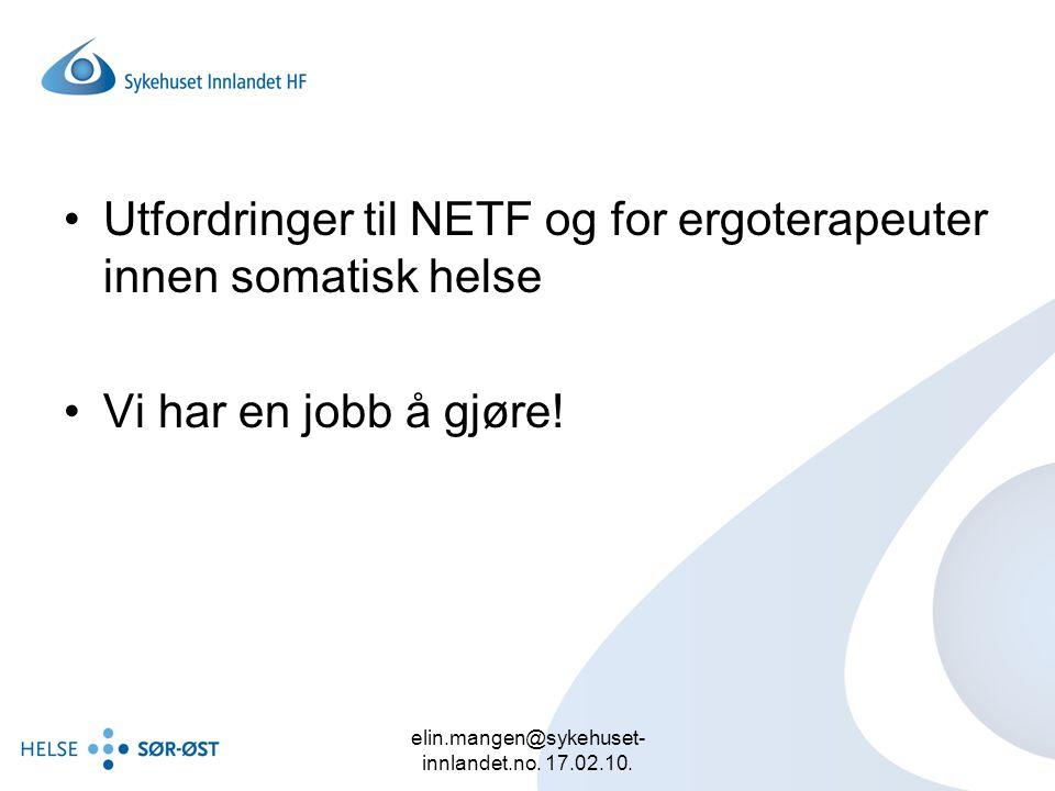 elin.mangen@sykehuset- innlandet.no. 17.02.10. Utfordringer til NETF og for ergoterapeuter innen somatisk helse Vi har en jobb å gjøre!