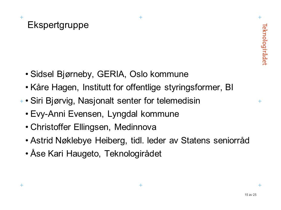 15 av 25 Ekspertgruppe Sidsel Bjørneby, GERIA, Oslo kommune Kåre Hagen, Institutt for offentlige styringsformer, BI Siri Bjørvig, Nasjonalt senter for