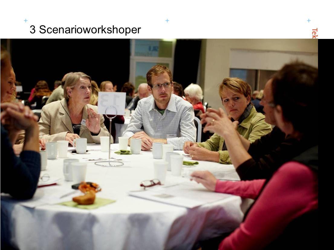 3 Scenarioworkshoper