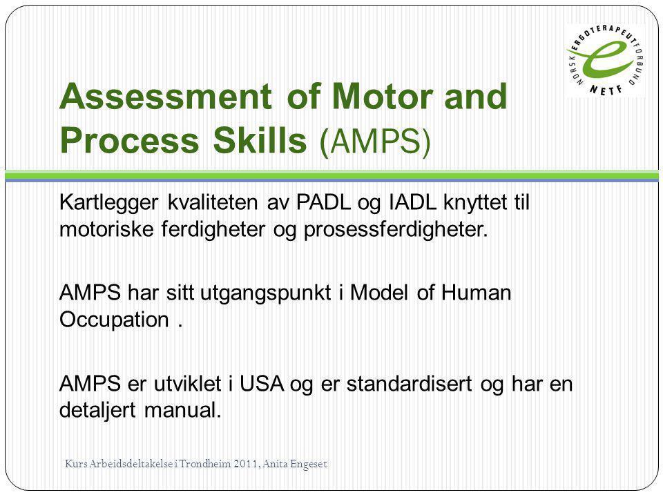 Assessment of Motor and Process Skills (AMPS) Kartlegger kvaliteten av PADL og IADL knyttet til motoriske ferdigheter og prosessferdigheter. AMPS har