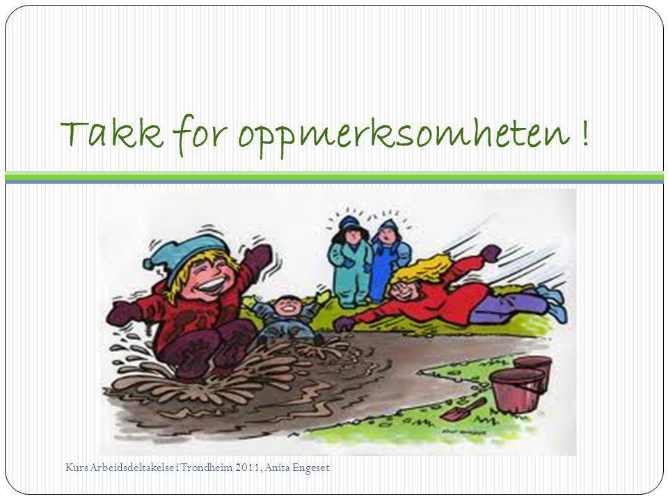 Takk for oppmerksomheten ! Kurs Arbeidsdeltakelse i Trondheim 2011, Anita Engeset