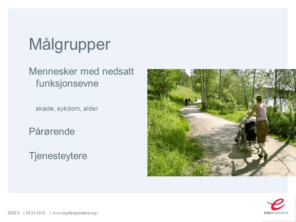 SIDE ||www.ergoterapeutene.org| Målgrupper Mennesker med nedsatt funksjonsevne skade, sykdom, alder Pårørende Tjenesteytere 25.01.20125