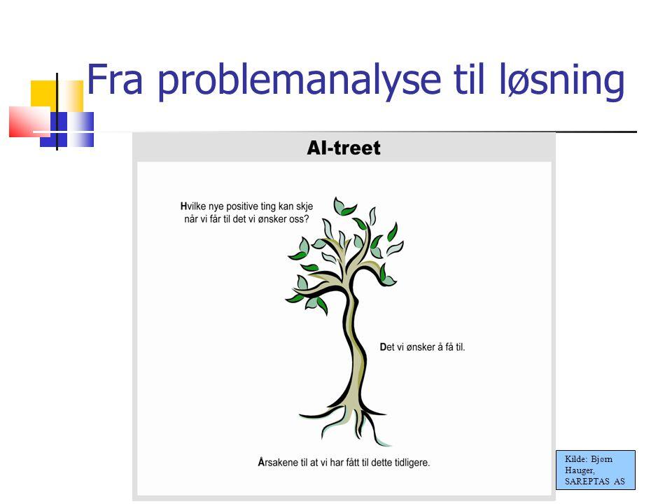 Fra problemanalyse til løsning Kilde: Bjørn Hauger, SAREPTAS AS