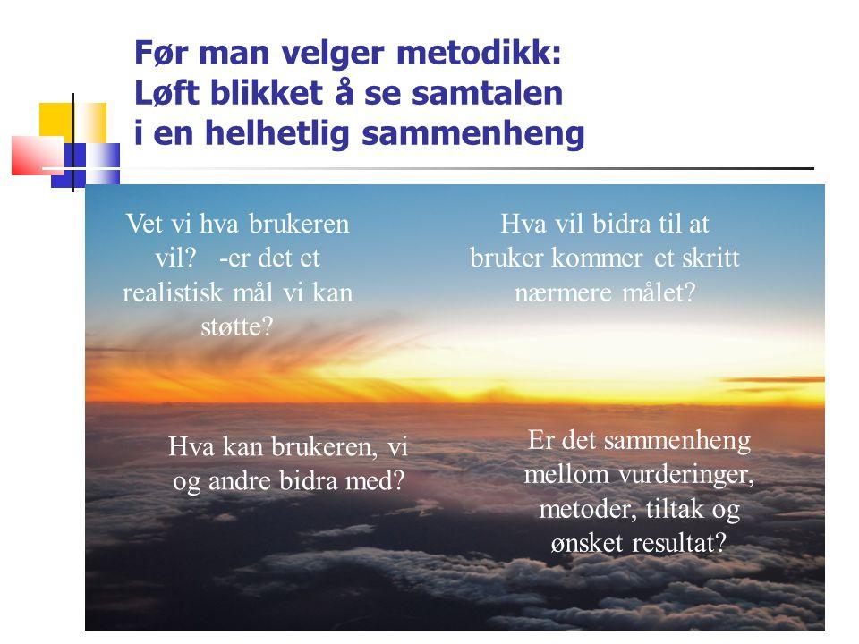 Ann Kristin Løe AI-metode for offensiv tenkning «Treøvelsen»: Formålet er å gi erfaring med å oversette problemer til ønsker.