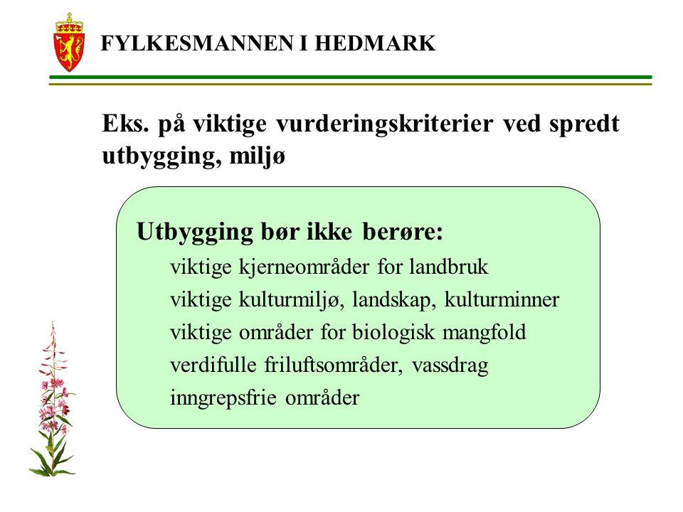 FYLKESMANNEN I HEDMARK Eks.
