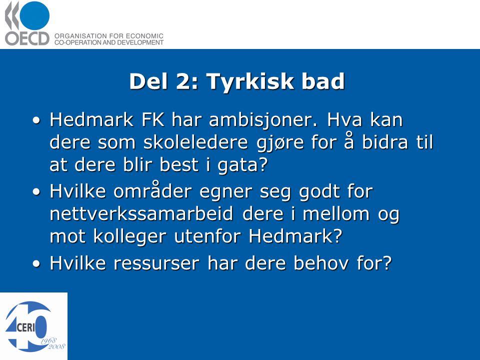 Del 2: Tyrkisk bad Hedmark FK har ambisjoner.