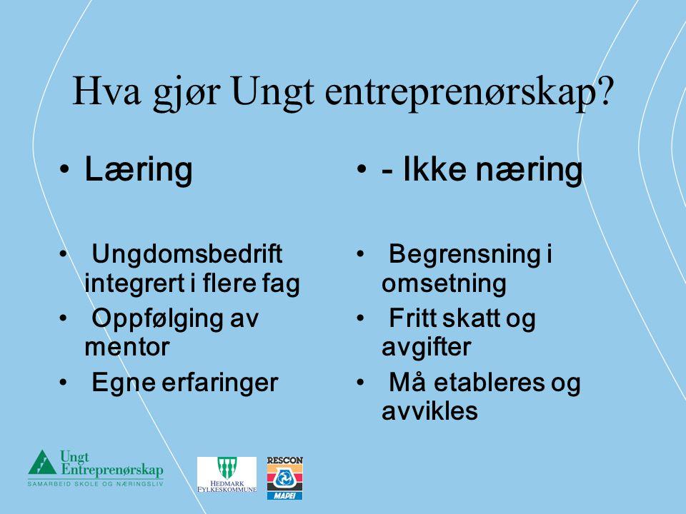 Hva gjør Ungt entreprenørskap? Læring Ungdomsbedrift integrert i flere fag Oppfølging av mentor Egne erfaringer - Ikke næring Begrensning i omsetning