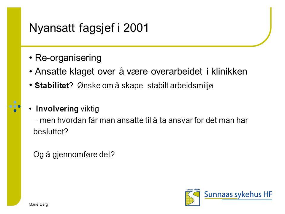 Marie Berg Nyansatt fagsjef i 2001 Re-organisering Ansatte klaget over å være overarbeidet i klinikken Stabilitet? Ønske om å skape stabilt arbeidsmil