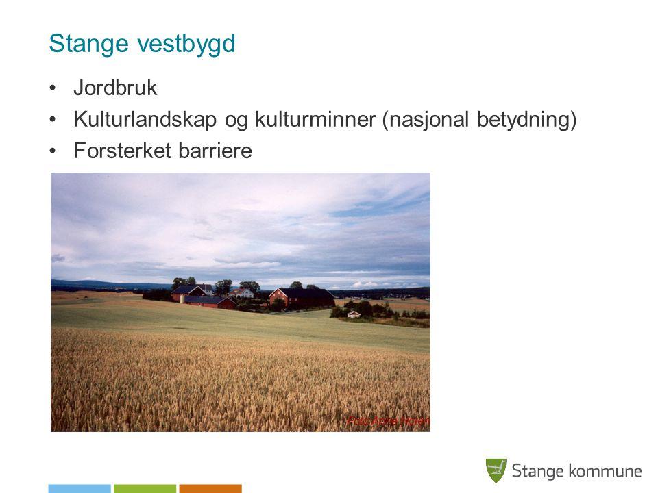 Stange vestbygd Jordbruk Kulturlandskap og kulturminner (nasjonal betydning) Forsterket barriere Foto Anne Holen