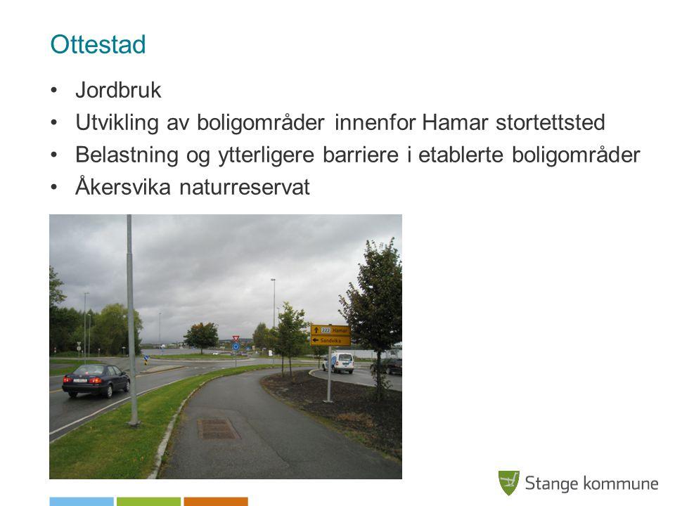 Ottestad Jordbruk Utvikling av boligområder innenfor Hamar stortettsted Belastning og ytterligere barriere i etablerte boligområder Åkersvika naturreservat
