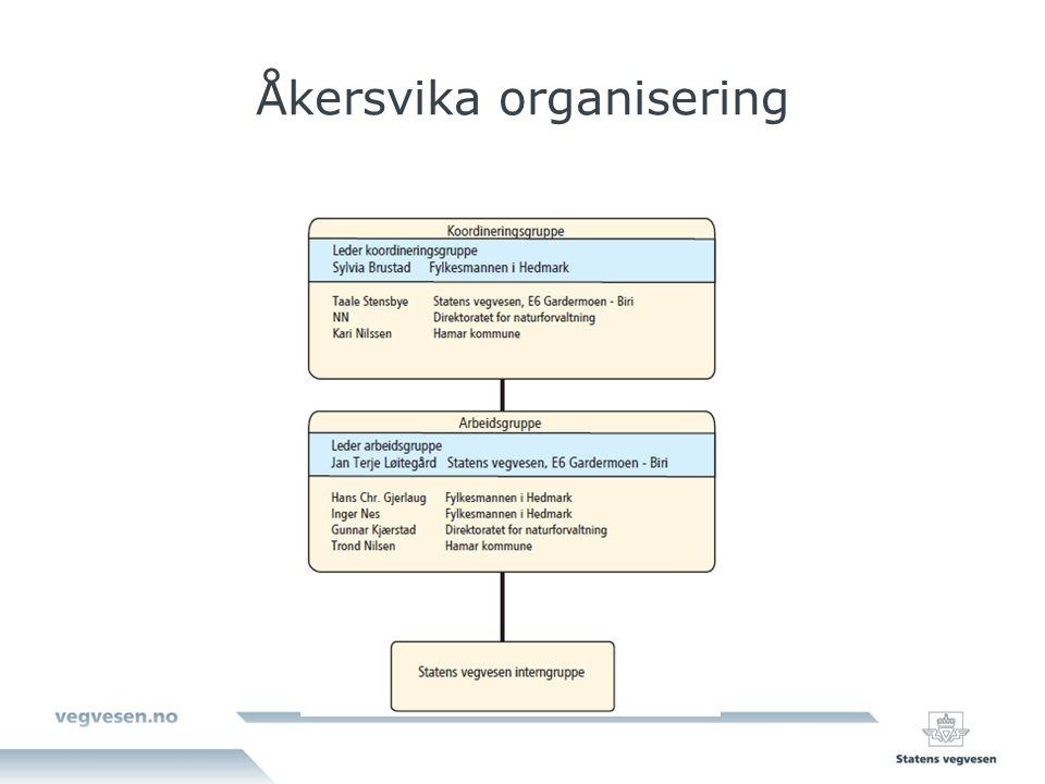 Åkersvika organisering
