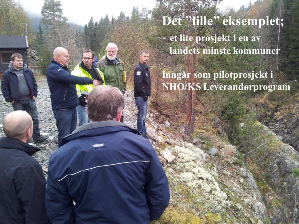 """Det """"lille"""" eksemplet; - et lite prosjekt i en av landets minste kommuner Inngår som pilotprosjekt i NHO/KS Leverandørprogram"""