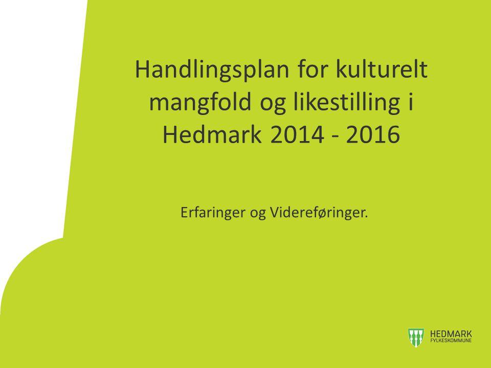 Handlingsplan for kulturelt mangfold og likestilling i Hedmark 2014 - 2016 Erfaringer og Videreføringer.