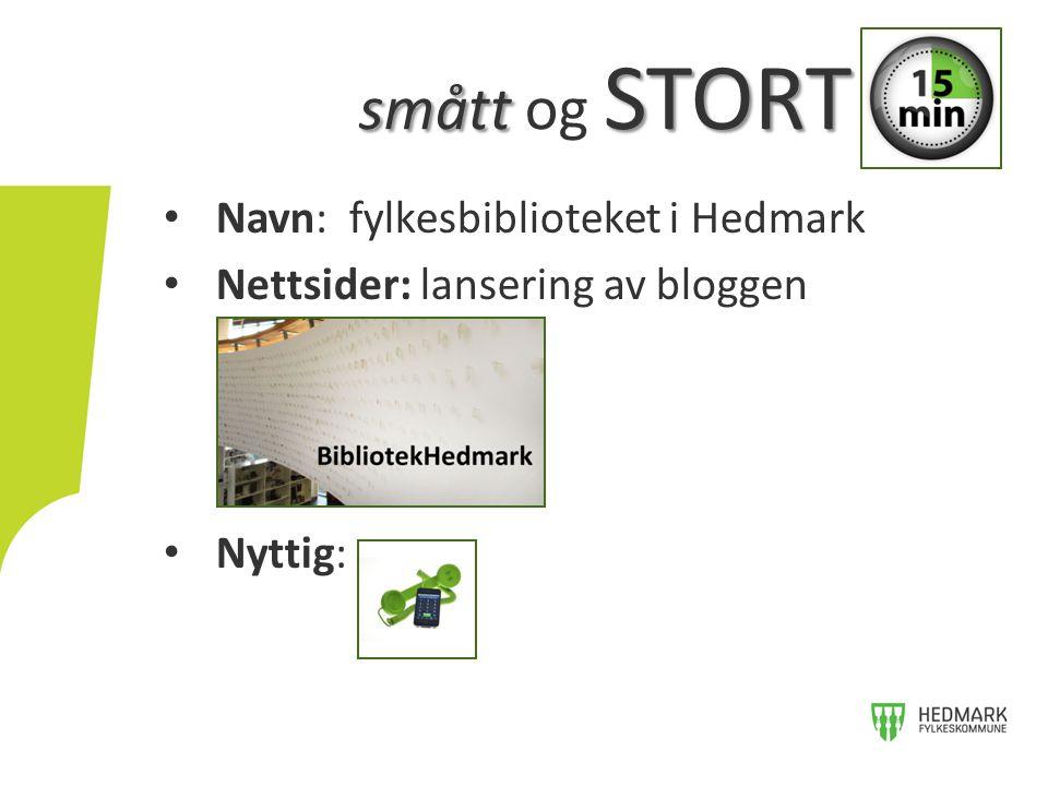 Navn: fylkesbiblioteket i Hedmark Nettsider: lansering av bloggen Nyttig: smått STORT smått og STORT