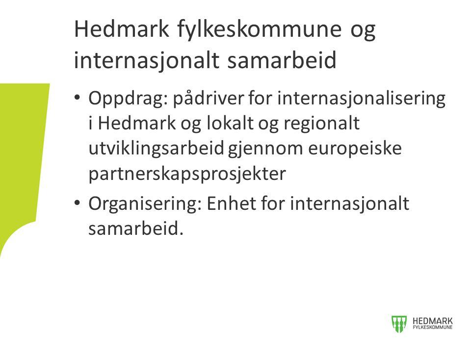 Oppdrag: pådriver for internasjonalisering i Hedmark og lokalt og regionalt utviklingsarbeid gjennom europeiske partnerskapsprosjekter Organisering: E