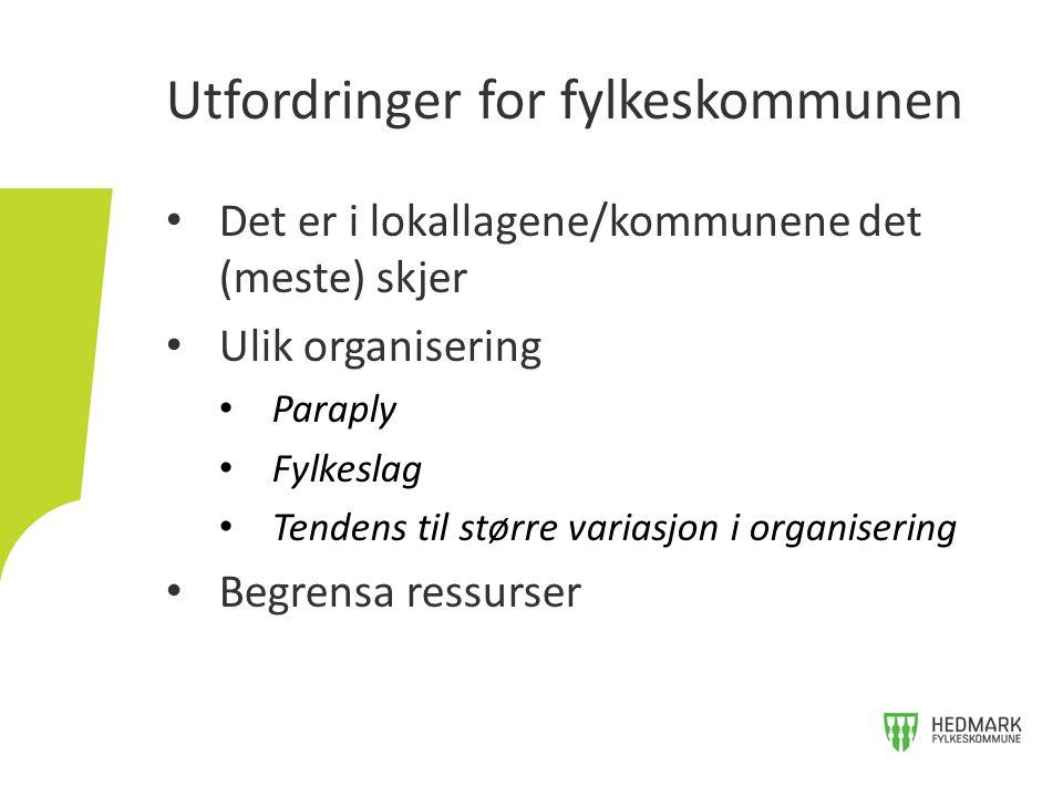 Det er i lokallagene/kommunene det (meste) skjer Ulik organisering Paraply Fylkeslag Tendens til større variasjon i organisering Begrensa ressurser Utfordringer for fylkeskommunen
