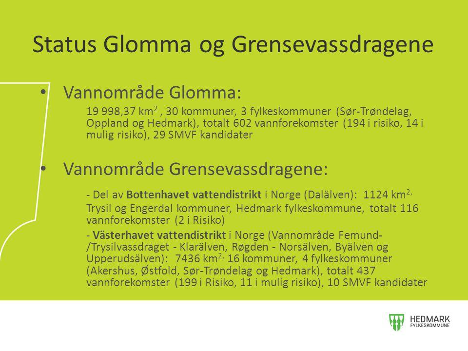 Vannområde Glomma: 19 998,37 km 2, 30 kommuner, 3 fylkeskommuner (Sør-Trøndelag, Oppland og Hedmark), totalt 602 vannforekomster (194 i risiko, 14 i m