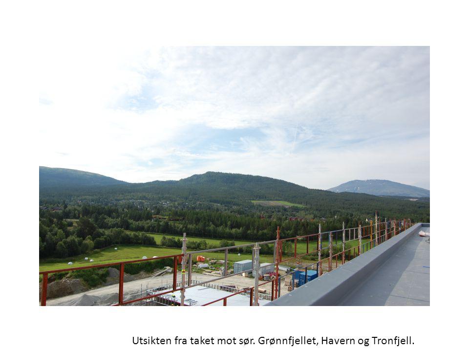 Utsikten fra taket mot sør. Grønnfjellet, Havern og Tronfjell.