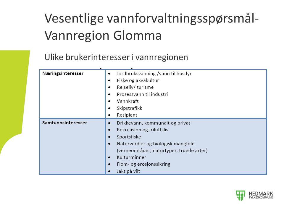 Ulike brukerinteresser i vannregionen Vesentlige vannforvaltningsspørsmål- Vannregion Glomma