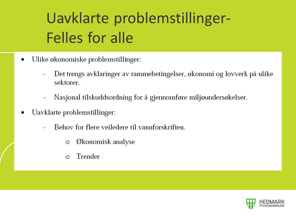 Uavklarte problemstillinger- Felles for alle