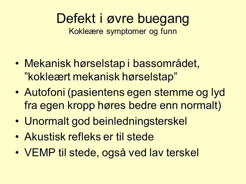 Defekten blottlagt via midtre skallegrop. (www.danieljlee.com)