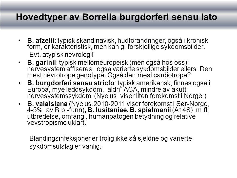 Nevrologi ved B.garinii versus B.afzelii Dyrkningspositive spinalvæsker korrelert til klinikk: Bannwarthsyndrom: Først og fremst B.garinii.