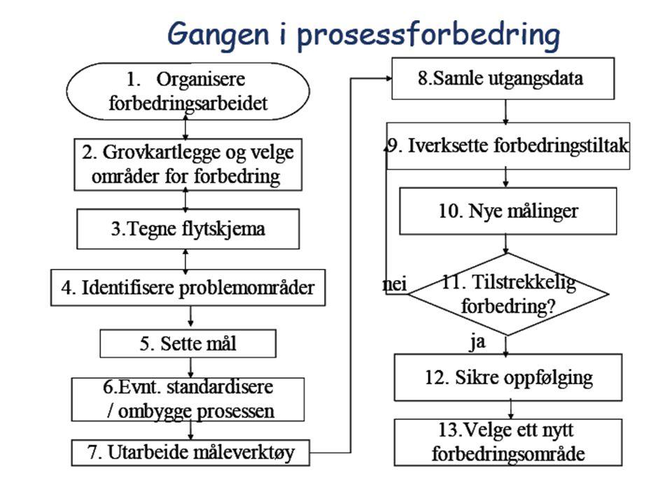 Referansegruppe for praktisk kvalitetsarbeid Hva gjorde Fjellsiden.