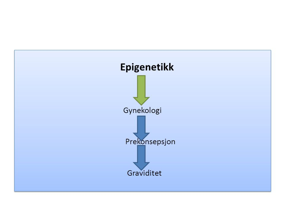 Epigenetikk Gynekologi Prekonsepsjon Graviditet Epigenetikk Gynekologi Prekonsepsjon Graviditet