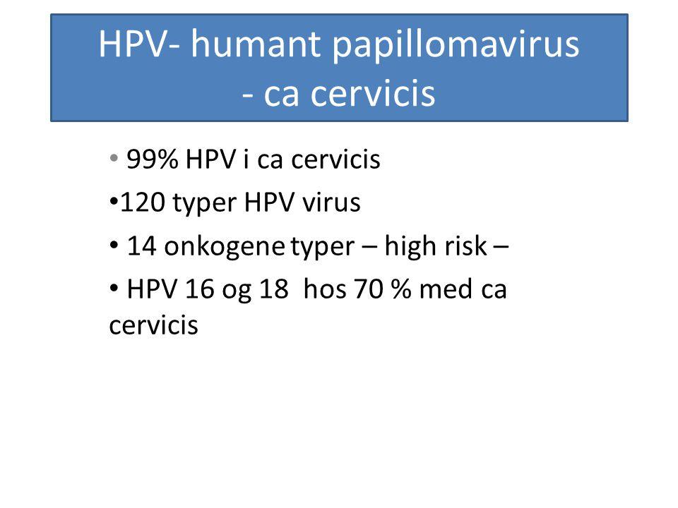 HPV- humant papillomavirus - ca cervicis 99% HPV i ca cervicis 120 typer HPV virus 14 onkogene typer – high risk – HPV 16 og 18 hos 70 % med ca cervic