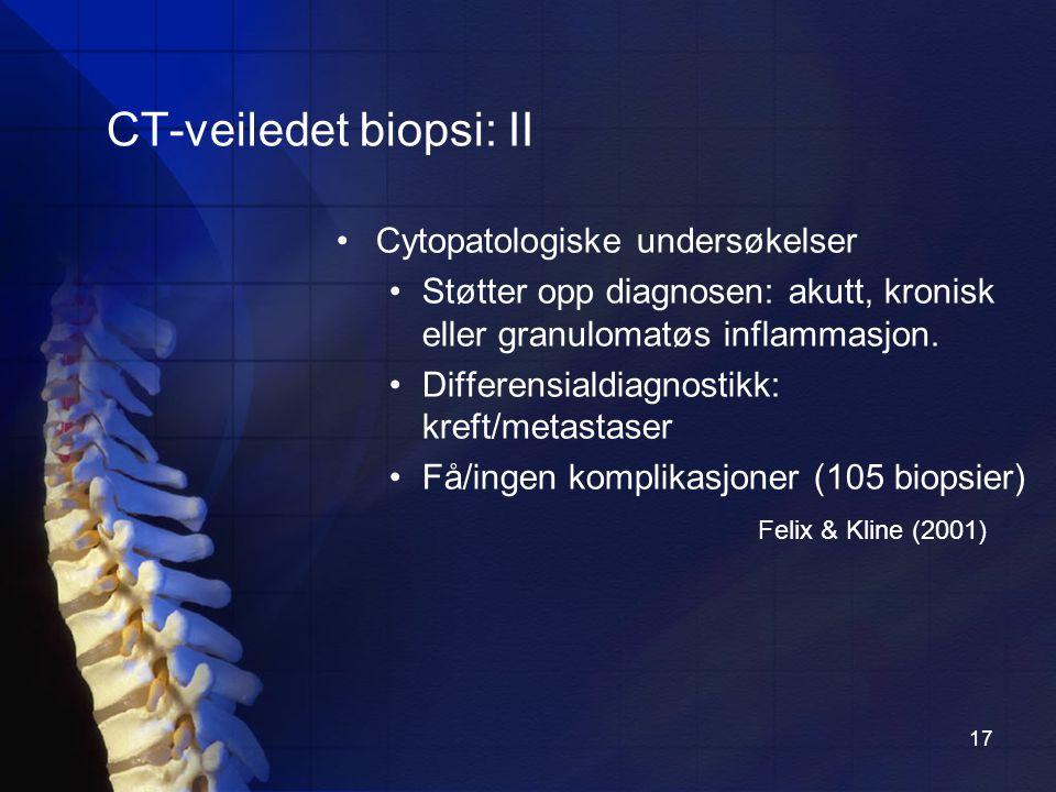 17 CT-veiledet biopsi: II Cytopatologiske undersøkelser Støtter opp diagnosen: akutt, kronisk eller granulomatøs inflammasjon.