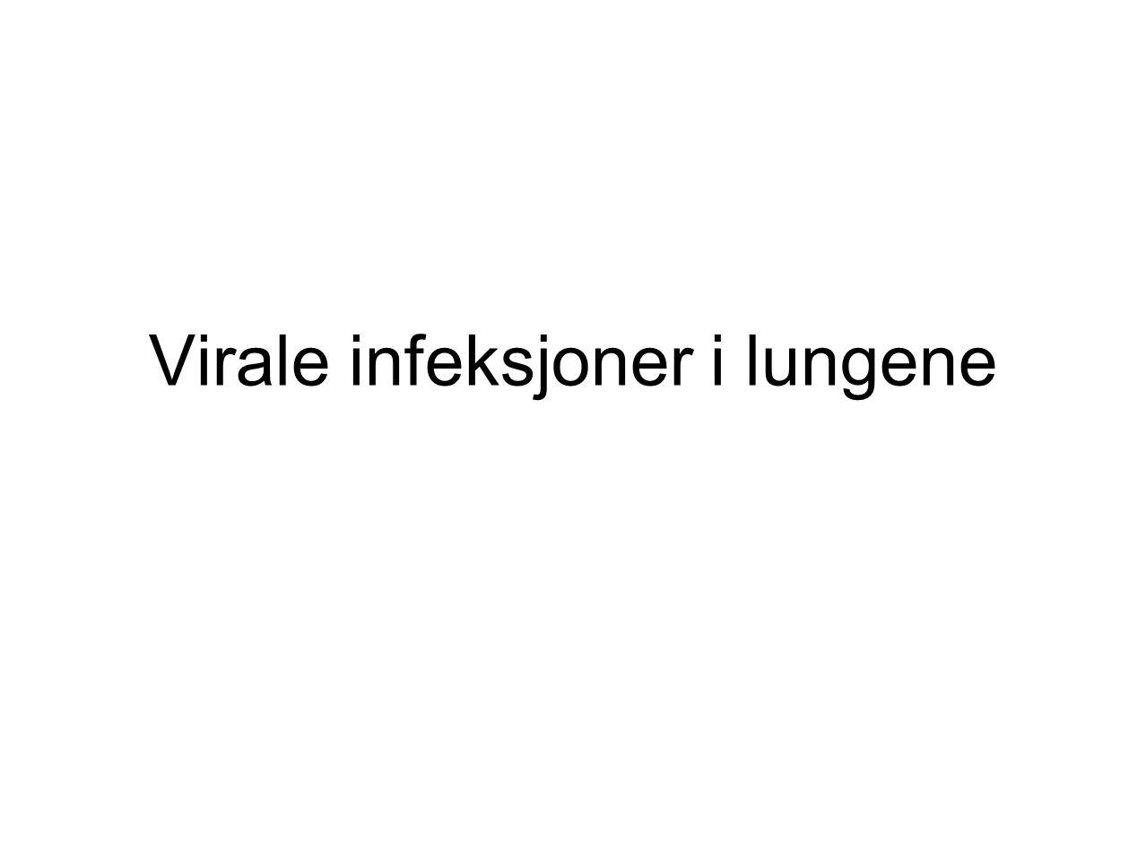 Virale infeksjoner i lungene
