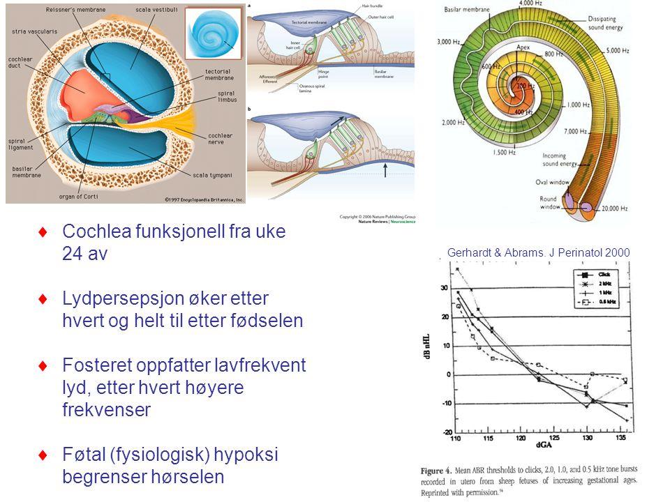 8  Cochlea funksjonell fra uke 24 av  Lydpersepsjon øker etter hvert og helt til etter fødselen  Fosteret oppfatter lavfrekvent lyd, etter hvert høyere frekvenser  Føtal (fysiologisk) hypoksi begrenser hørselen Gerhardt & Abrams.