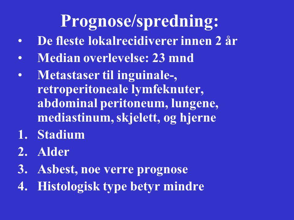 Prognose/spredning: De fleste lokalrecidiverer innen 2 år Median overlevelse: 23 mnd Metastaser til inguinale-, retroperitoneale lymfeknuter, abdominal peritoneum, lungene, mediastinum, skjelett, og hjerne 1.Stadium 2.Alder 3.Asbest, noe verre prognose 4.Histologisk type betyr mindre
