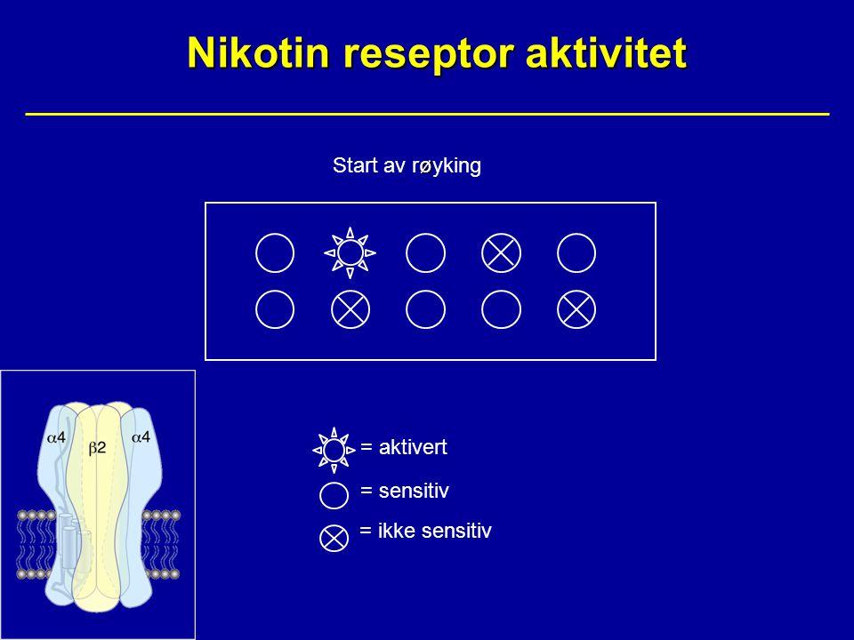 Nikotin reseptor aktivitet ø Start av røyking = aktivert = sensitiv = ikke sensitiv