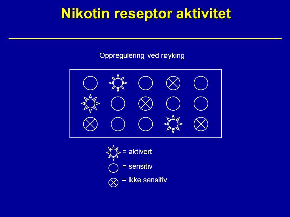 Nikotin reseptor aktivitet Oppregulering ved røyking = aktivert = sensitiv = ikke sensitiv