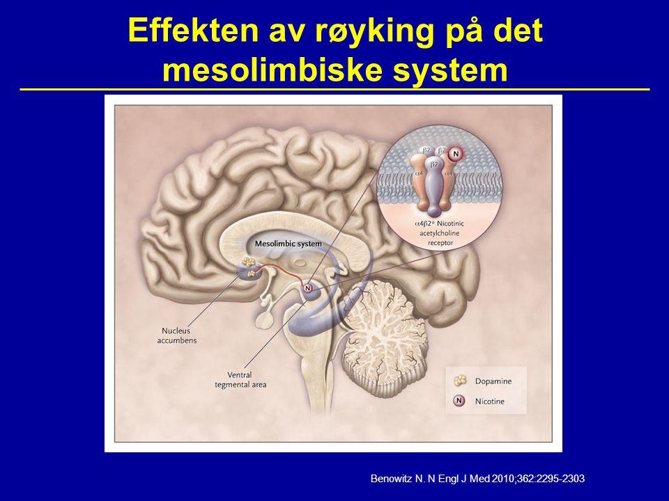Effekten av røyking på det mesolimbiske system Benowitz N. N Engl J Med 2010;362:2295-2303