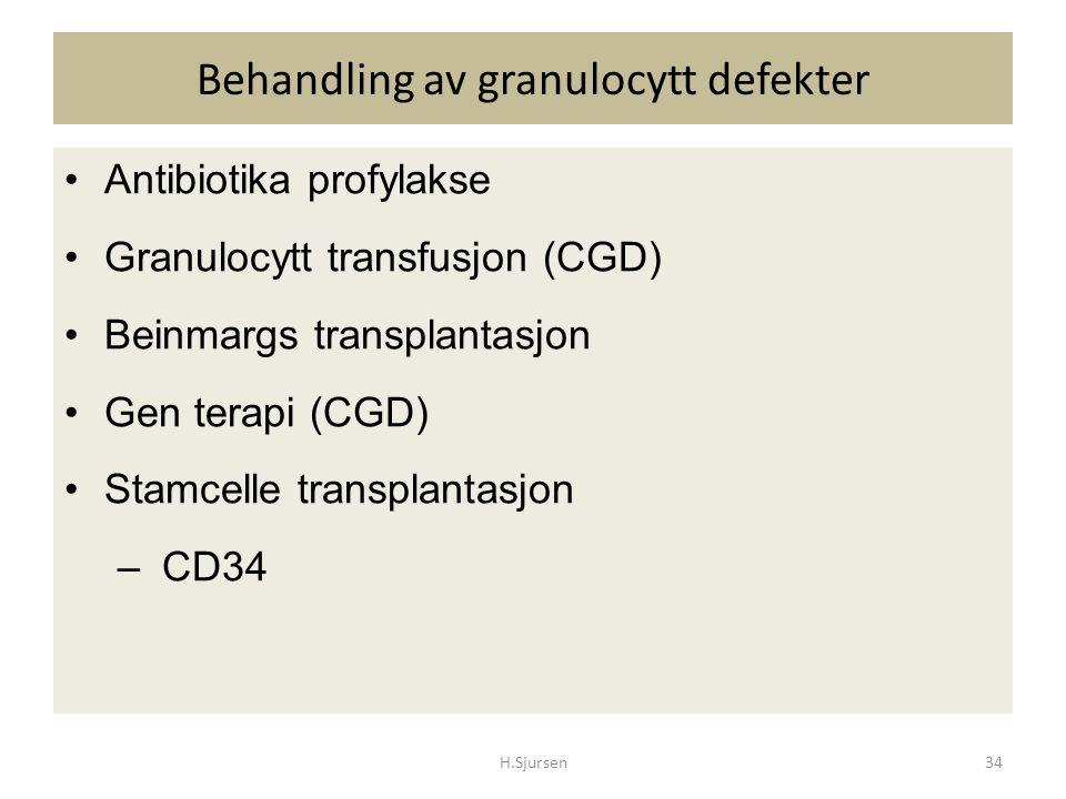 Behandling av granulocytt defekter Antibiotika profylakse Granulocytt transfusjon (CGD) Beinmargs transplantasjon Gen terapi (CGD) Stamcelle transplan