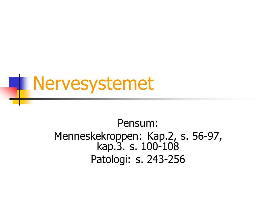 Nervesystemet Pensum: Menneskekroppen: Kap.2, s. 56-97, kap.3. s. 100-108 Patologi: s. 243-256