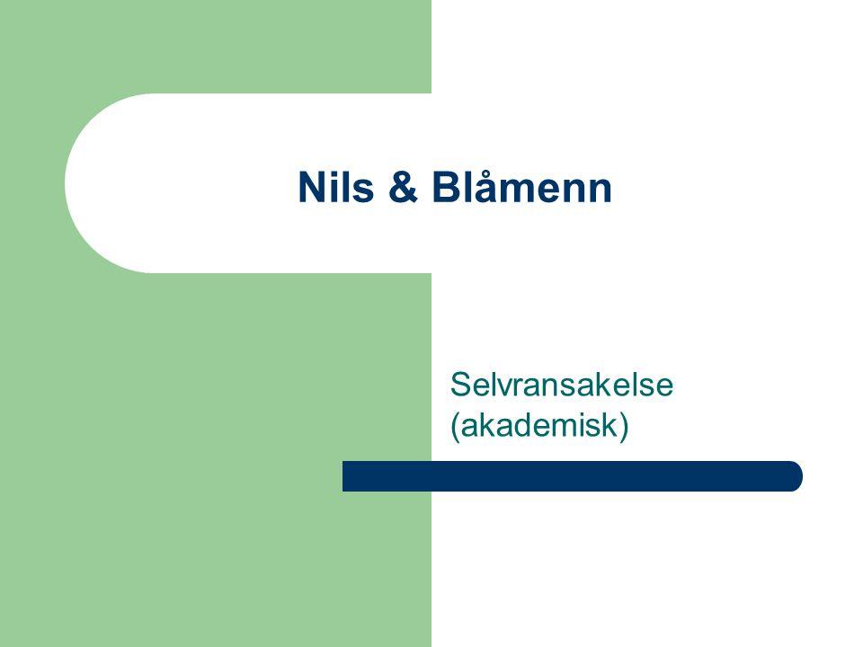 Nils & Blåmenn Selvransakelse (akademisk)