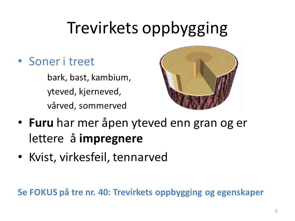 Trevirkets oppbygging 6 Soner i treet bark, bast, kambium, yteved, kjerneved, vårved, sommerved Furu har mer åpen yteved enn gran og er lettere å impr