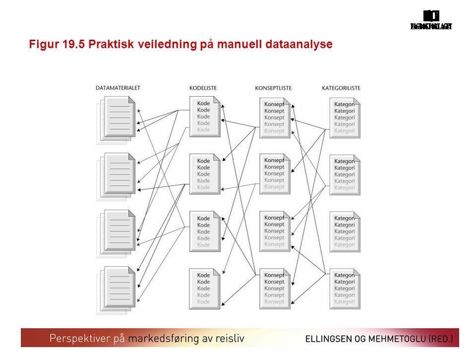 Figur 19.5 Praktisk veiledning på manuell dataanalyse