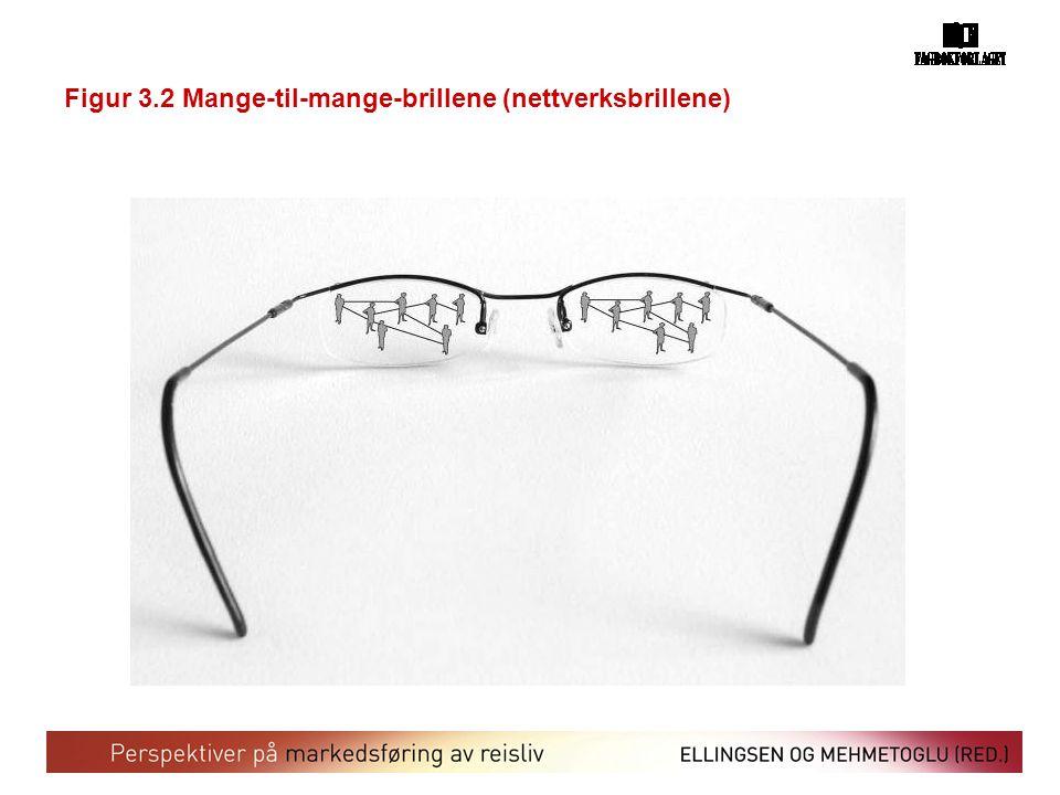 Figur 3.2 Mange-til-mange-brillene (nettverksbrillene)
