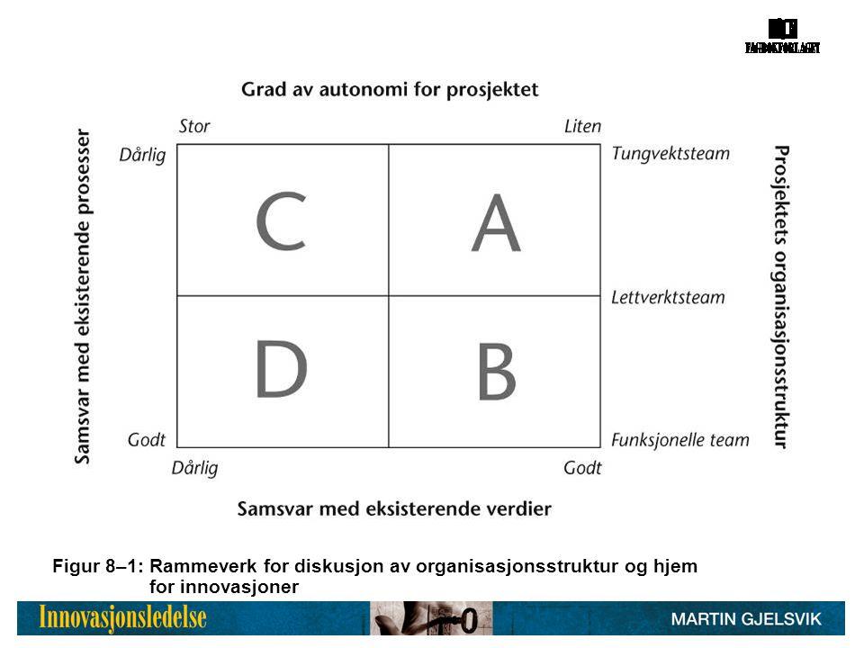 Figur 8–1: Rammeverk for diskusjon av organisasjonsstruktur og hjem for innovasjoner