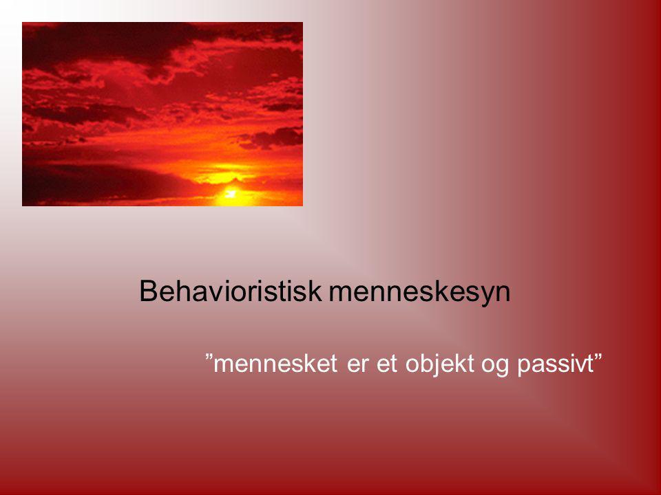 En grunnleggende antagelse er at mennesker streber etter det behagelige og helst vil unngå det ubehagelige Viktige virkemidler i den behavioristiske læringen er belønning og straff